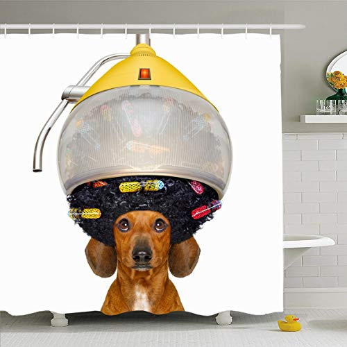 Ahawoso Shower Curtain 72x78 Inches Joke Groomer Dachshund Sausage Dog Hairdresser Hair Under Haircut Afro Barber Care Comb Curler Design Waterproof Polyester Fabric Set with Hooks