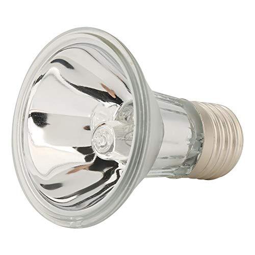 FidgetKute Plant Pet Reptile Basking Spot Light UVA UVB Lamp Heater Halogen Bulb Spotlights 75W