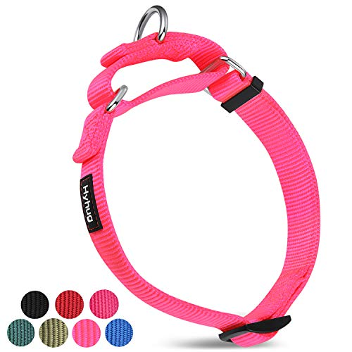 Hyhug Upgraded Sturdy Nylon Escape-Proof Martingale Dog Collar for Small Girl Female Women Dogs Comfy and Safe - Walking, Professional Training, Daily Use. (Small, Hot Pink)