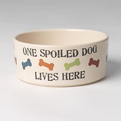 - PetRageous 5.5 Cup One Spoiled Dog Bowl, 7