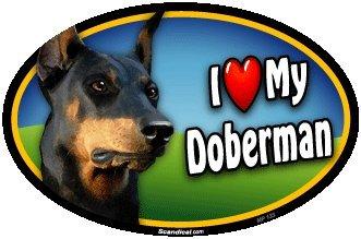 Oval Car Magnet - I Love My Doberman Pinscher ()