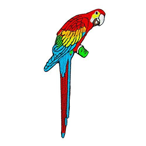 Parrot Iron on Applique (Parrot Iron On Transfers)