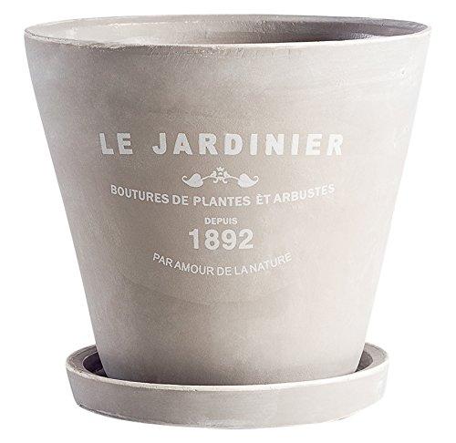 Torre & Tagus 902614B Jardinier Round Planter on Saucer, 5 inch, Natural