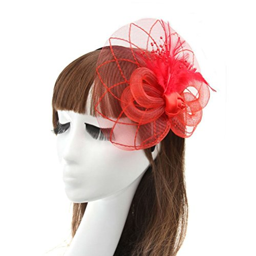 Fascinator Hair Clip Head Hoop Feather Rose Flower Derby Cocktail Party Wedding Women Red (Halloween Prop Making Books)
