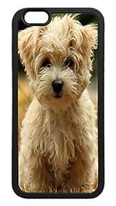 Generic Havanese Silk Dog Back Case for Apple Iphone 6 4.7 Inch TPU Black Bumper