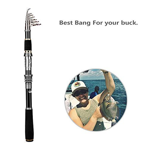PLUSINNO Telescopic Fishing Rod Pole Spinning Fishing Rod Carbon Fiber Travel Rod for Saltwater Freshwater Rods(3.3M 10.83Ft) (Graphite Telescopic Rod)