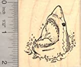 Great White Shark Rubber Stamp