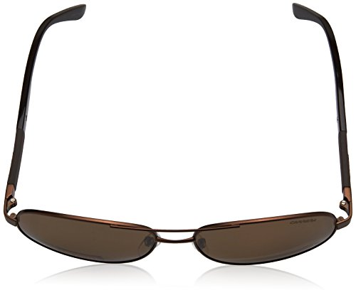 123 Sonnenbrille Azul S Brown Carrera CARRERA Red Dkbluee Gold axwFq4