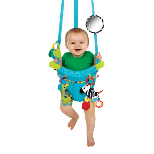 Bright Starts Bounce n Spring Deluxe Door Jumper