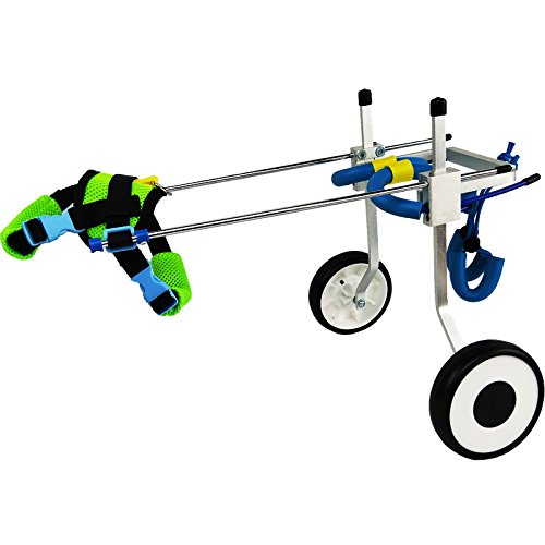 Adjustable Dog Pet Wheelchair, Hind legs Rehabilitation, 5 SIZES (0--100lbs), Dog Cart ,Wheels (L: Hip Height 20--24'', Weight 44--110lbs)