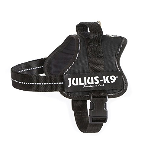 Julius-K9 Powerharness, Mini, Black