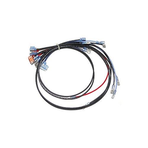 Raypak 004012F Raypak Wire Harness Std., 155A & 155B/C ()
