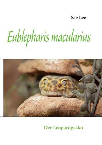 Eublepharis macularius: Der Leopardgecko