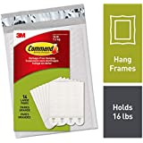 Command Picture Hanging Strips, Easy On, Easy Off, Gallery Wall Pack (PH206-14NA)