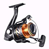 NOEBY Fishing Reels + Shallow Spool 5+1BB Spinning Reels Ultra Smooth Reel for Saltwater or Freshwater Bass (Gold 5000) For Sale