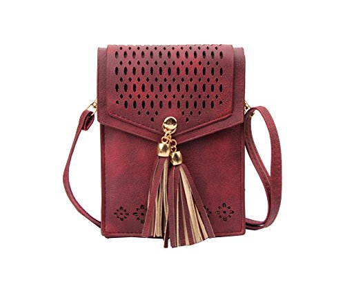 Mini Womens Bag - Small Crossbody Bag Tassel Phone Purse for Women Teen Girls with Double Compartments