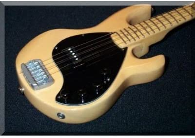 John Deacon Guitarra Miniatura Stingray Bass Queen: Amazon.es ...