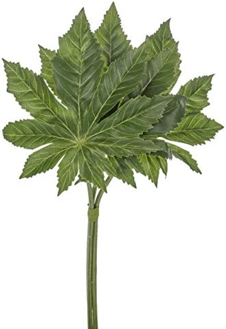 Vintage Black Velvet Varigated Leaf Stems