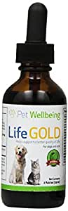 Pet Wellbeing - Life Gold For Dogs and cats - Natural Cancer Support For Dogs and cats - 2 Ounce 59 Milliliter