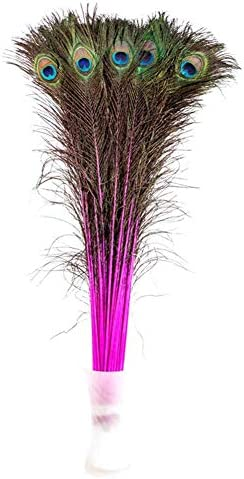 4Pcs Beautiful Natural Peacock Tail Feathers 10-12inch For DIY Decoration Hot
