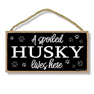 Honey Dew Gifts Dog Sign, A Spoiled Husky Lives Here 5 inch by 10 inch Hanging Wood Sign Home Decor, Wall Art, Siberian Husky Gifts 2