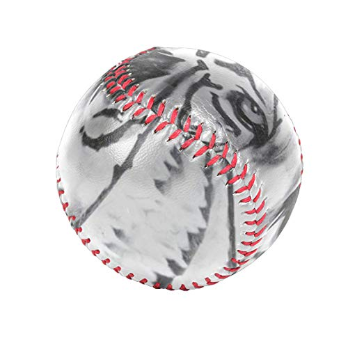 Black And White Watercolor Tiger Head Personalized Low Impact Safety Tee Balls Indoor Baseball or Outdoor Baseballs for League Play, Practice, Competitions, Gifts, Keepsakes, Arts and Craftsophie ()