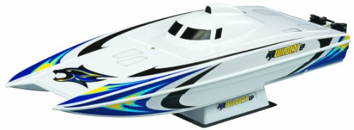 Aquacraft 2.4Ghz Wildcat EP BL Catamaran  RC Boat