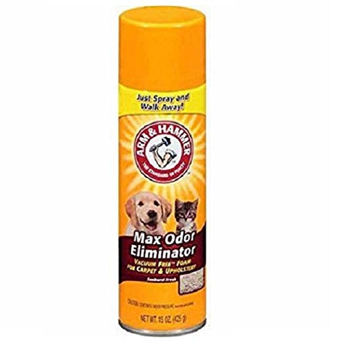 Arm And Hammer Dry Carpet Cleaner