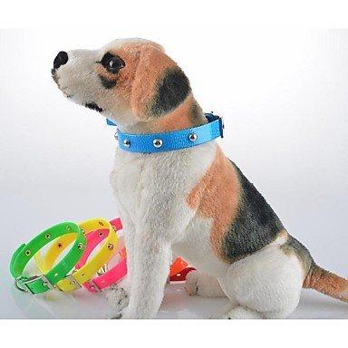 Feng Pet Dog Collar For Larger Big/Small Dog Colorful Rainbow Dog Collar