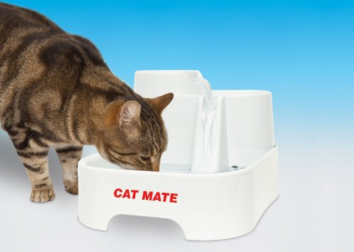 Dishes, Feeders & Fountains Self-Conscious Pet Catmate Drinking Water Fountain C335 Cat Supplies