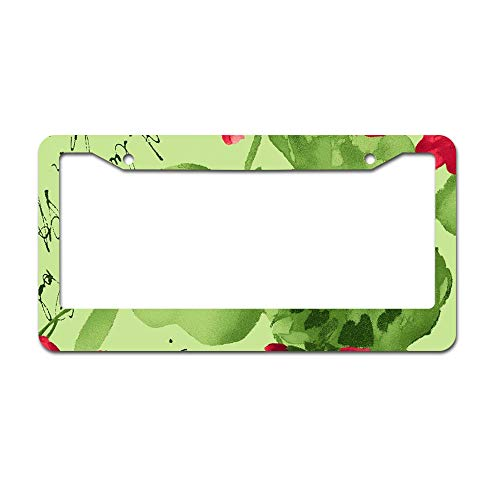 DKISEE Abstract Chloe Light Green Geraniums License Plate Frame Aluminum Car License Plate Covers with 2 Holes 12