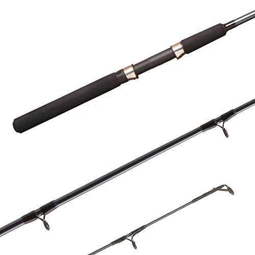 Cheap Shimano FXS66MHB2 FX Spinning Rod, 6'6″ Length, 2pc, 10-30 lb Line Rate, 1/4-3/4 oz Lure Rate, Medium/Heavy Power