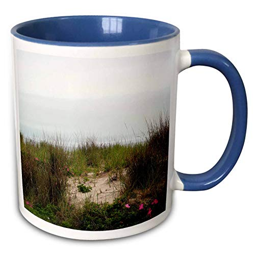 3dRose Stamp City - landscape - Photograph of dune grass and pink flowers on a Jersey Shore beach. - 11oz Two-Tone Blue Mug ()