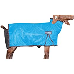 Weaver Leather Livestock ProCool Mesh Goat Blanket with Reflective Piping