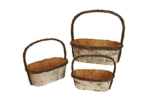 Wald Imports White   Birch Bark    Decorative Nesting Storage Basket, Set of 3 (White Wicker Easter Basket)