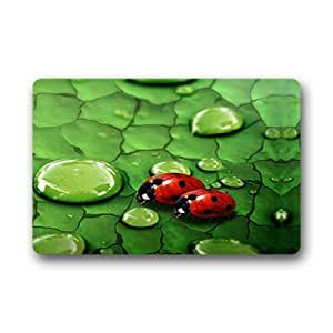 "Custom ladybug Doormat Outdoor Indoor 23.6""x15.7"" about 59.9cmx39.8cm"