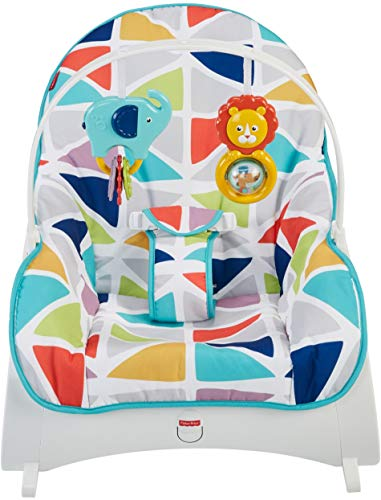 Learn More About Fisher-Price Infant-to-Toddler Rocker, Teal