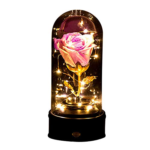 Daxin Rose Lamp, Real Enchanted Rose in Glass Dome, Preserved Rose Flower Night Light with Musical Box, Eternal Flowers Rose Gift for Her on Thanksgiving Day, Birthday,Velantine's Day,Mather's Day (Gift Velantine)