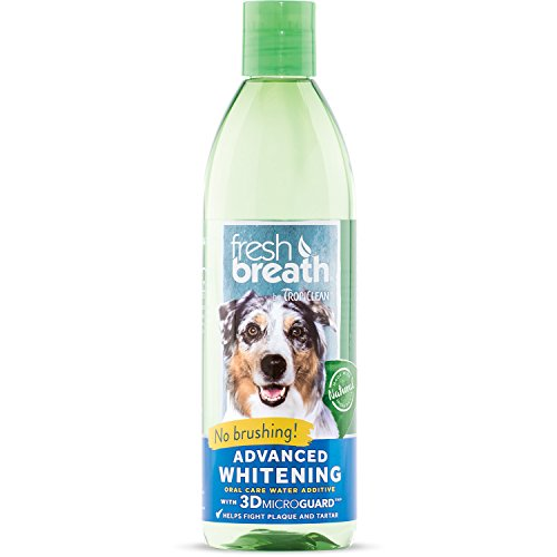 TropiClean Fresh Breath Advanced Whitening Oral Care Water Additive for Dogs, 16oz, Made in USA