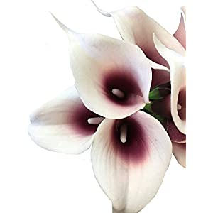 Angel Isabella, LLC 20pc Set of Keepsake Artificial Real Touch Calla Lily with Small Bloom Perfect for Making Bouquet, Boutonniere,Corsage (Picasso Wine(Burgundy)) 3