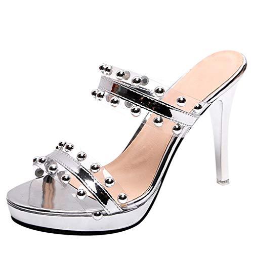TIANMI Women's Summer Open Toe Slippers Fashion Wild Transparent Sandals High Heel Shoe(Silver,37)