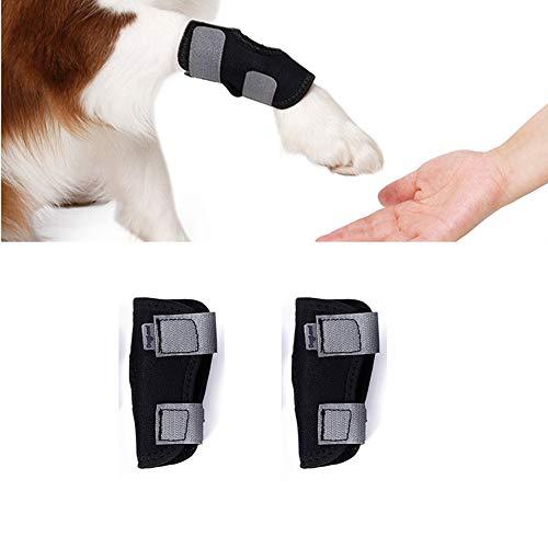 Short Leg Splint - ZEEY 1 Pair Dogs Leg Knee Brace, Injury Anti-Lick Arthritis Fixation Restoration Auxiliary Strap Front Short Leg Wrap Leg Support Sheath (M - 1 Pair)