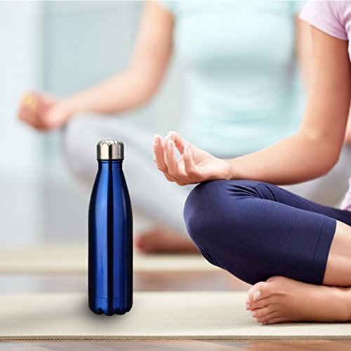 KING DO WAY Double Wall Vacuum Insulated Stainless Steel Water Bottle, 17 oz - Dark Blue