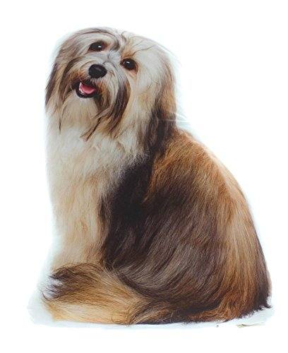 Dog Themed Accent Pillow, Bearded Collie Tibetan Terrier, Approx 14