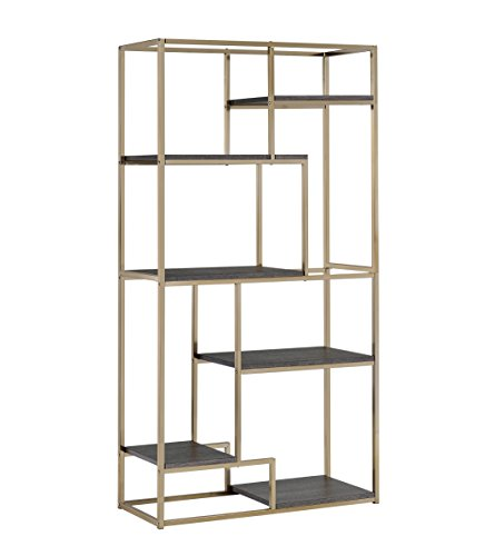 Furniture of America Corley Contemporary 6 Shelf Bookcase, Champagne ()