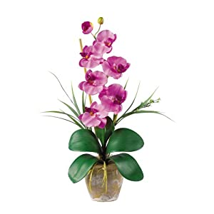 Nearly Natural 1016-MA Phalaenopsis Silk Orchid Flower Arrangement, Mauve 64
