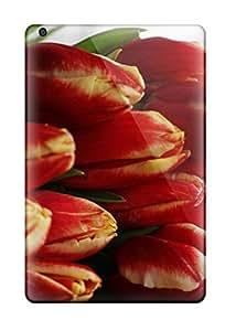 Popular AnnaSanders New Style Durable Ipad Mini/mini 2 Case (XAUKVuF9843jneOC)