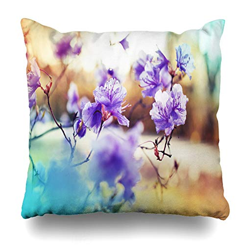 Suesoso Decorative Pillows Case 18 X 18 inch Colorful Apple Blossom Tree Over Nature Spring Flowers Throw Pillowcover Cushion Decorative Home Decor Nice Gift Garden Sofa Bed Car