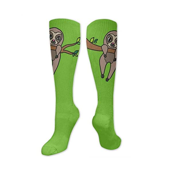Cute Sloth Tree Novelty Crew Socks Knee High Socks For Women And Men -