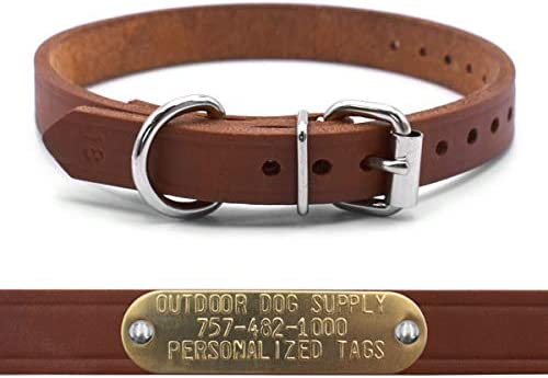 OmniPet 3 4 Leather D Ring Dog Collar Strap Custom Brass Name Plate Id Tag